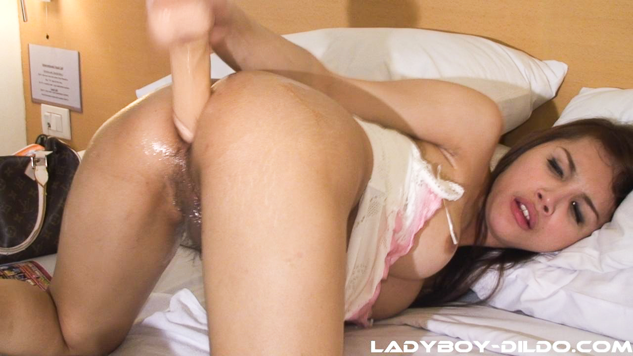 ladyboy anus Ladyboy Cum In Anus inviting Shiny Ladyboy cock and oiled dildo stuffed anus