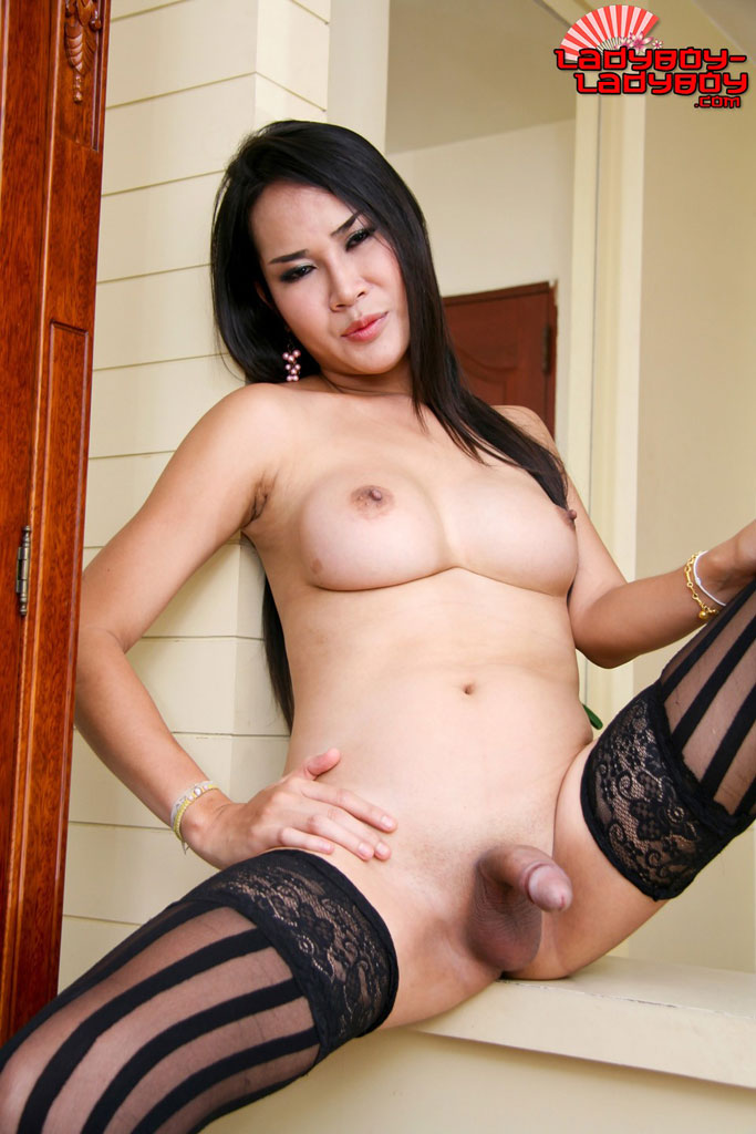 Ladyboy Shemale And are