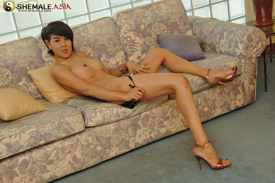 thai ladyboy milf stavanger