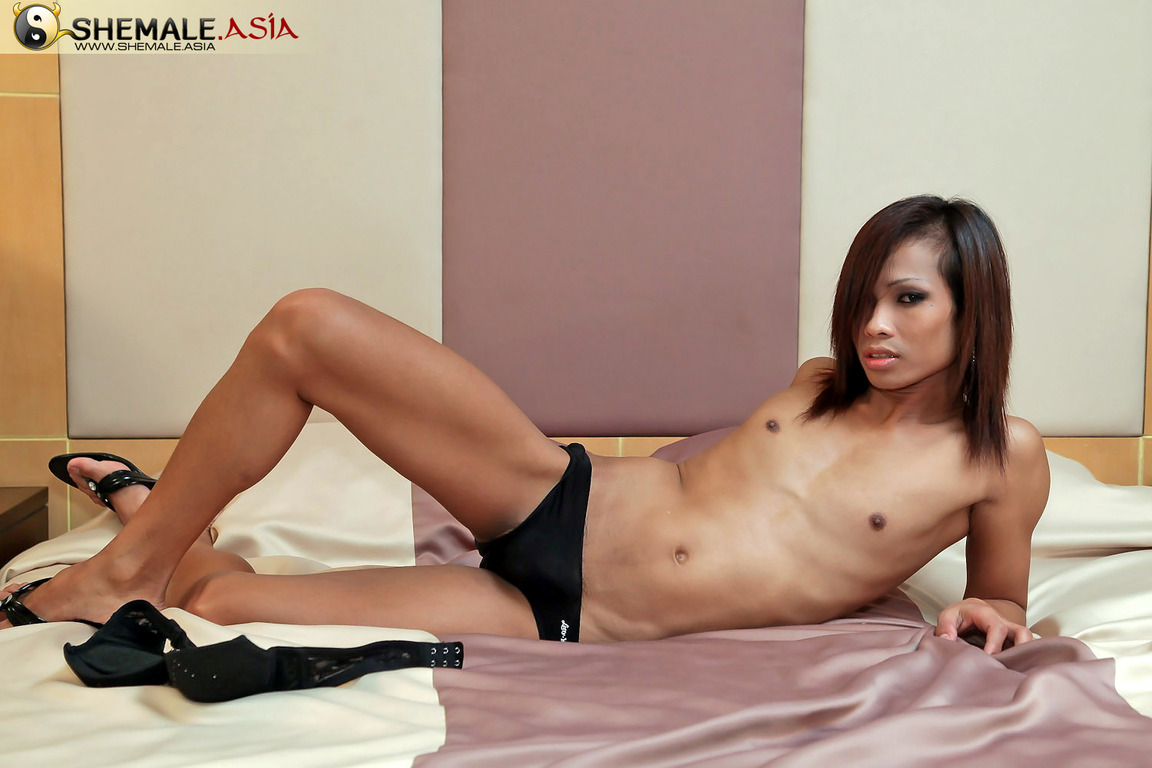 Asian shemales on webcam
