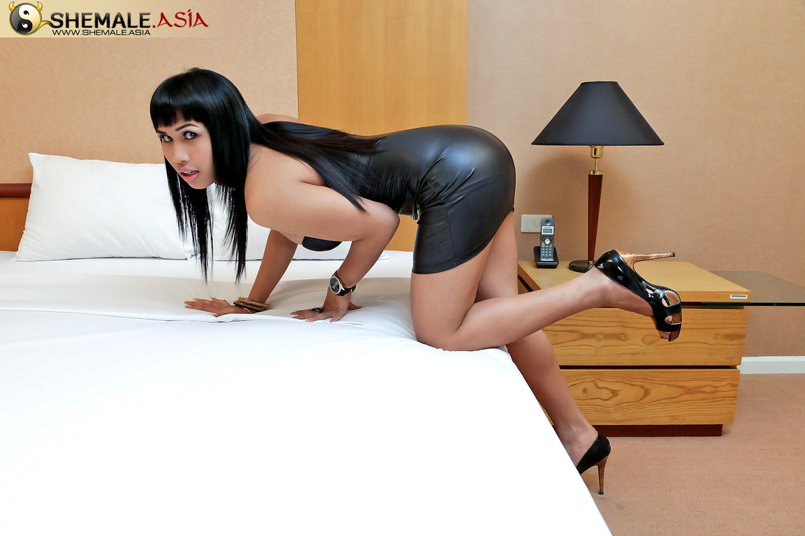 Transsexual slave Gay adult stories and transformation New life shemale movs