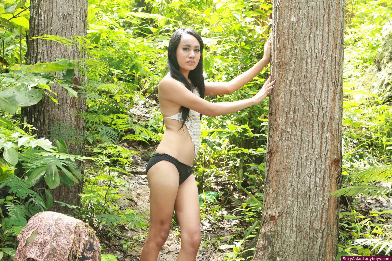 Naked Asian Forest