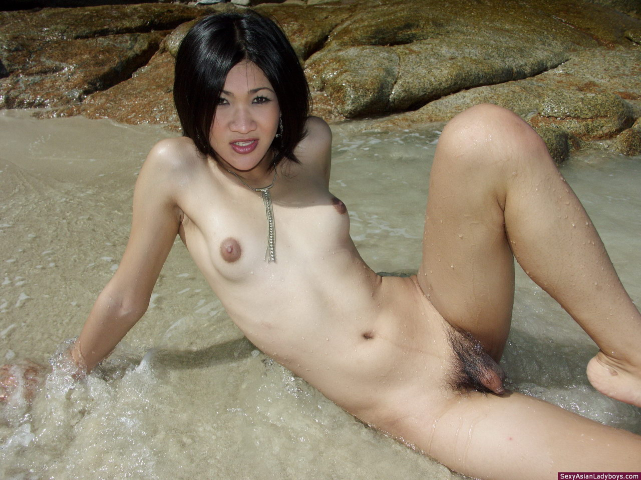 Shemale on nudist beach