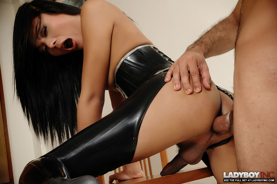 Shemales in latex free video