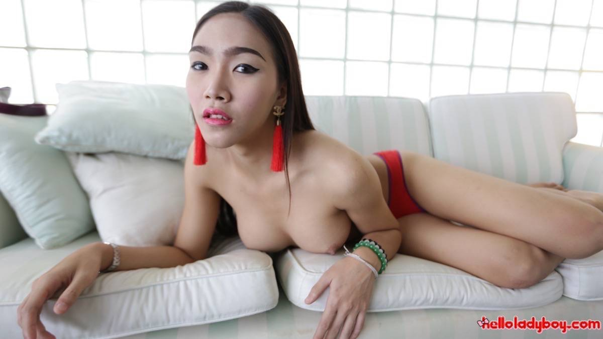 Big Booty Thai Ladyboy - Lovely big-dicked Thai Ladyboy opens ass for tourist after date
